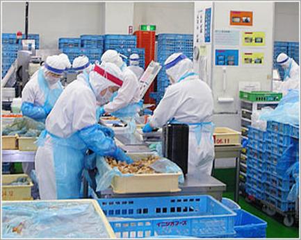 空き時間を有効に使って働きたい方や、安定して働きたい方は大歓迎!雇用形態が選べる惣菜包装スタッフ。